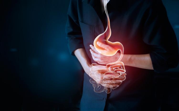 Gastrointestinal Sistem Nedir? Ve Hastalıkları Nelerdir?