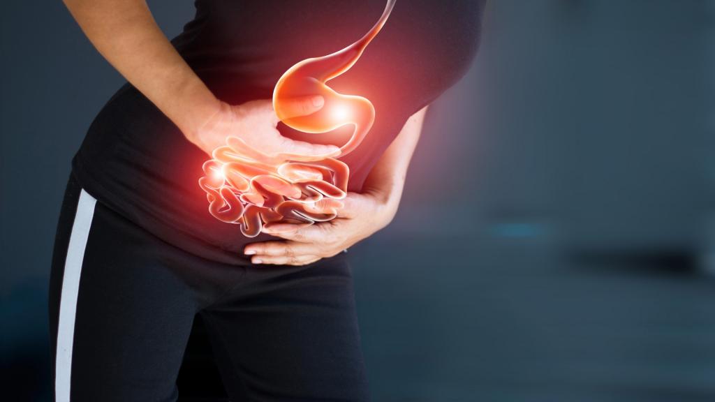 Gastrointestinal Sistem nedir